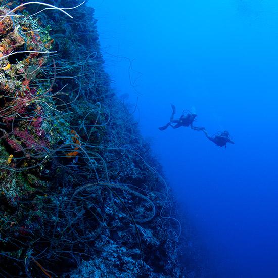 vast-underwater-ocean