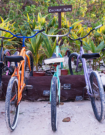 bikes parked by the beach