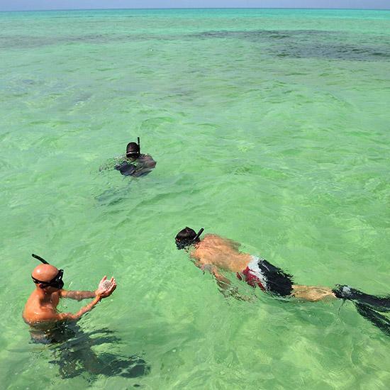 snorkelers-on-shore